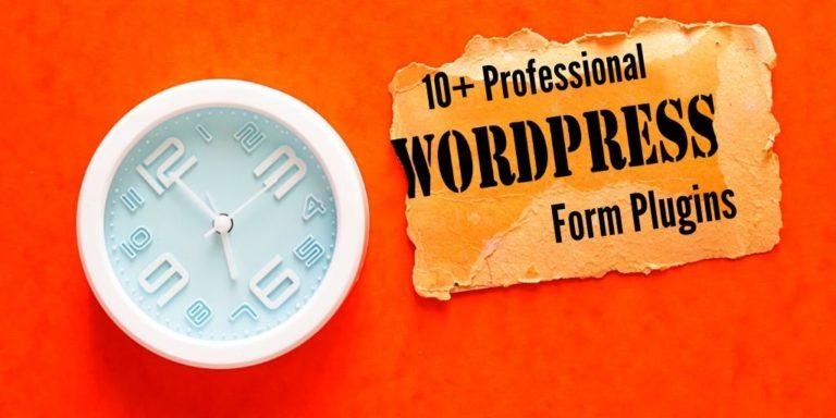 10+ Professional Form Plugins For WordPress