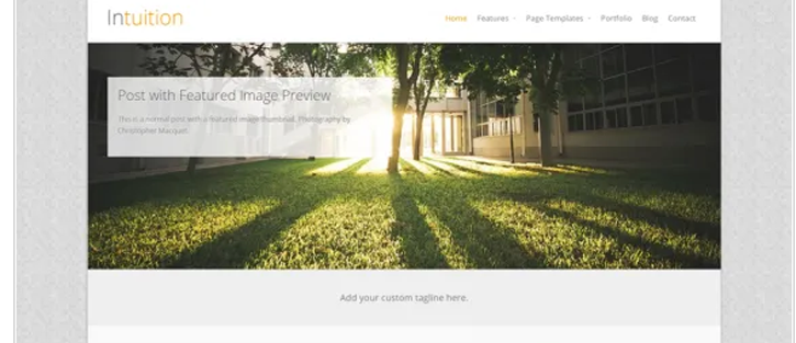 Intuition - WordPress WooCommerce Theme