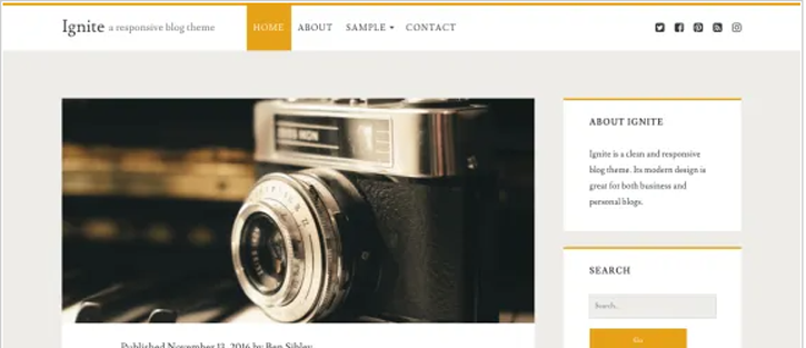 Ignite - best free WordPress themes
