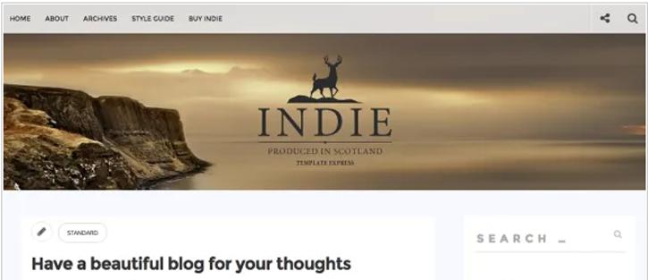 Indie - best free WordPress themes